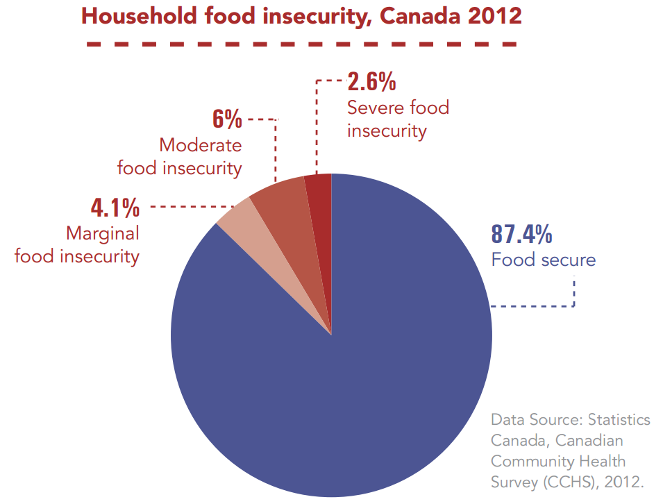 the problems of food insecurity in america And food insecurity in america submitted to: subcommittee on department operations, oversight, nutrition, and forestry us house committee on agriculture the problems of hunger and food insecurity are so unnecessarily widespread in our.